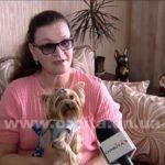 Пошив одежды для собак своими руками