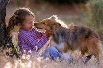 Собаки защищают детей от аллергии