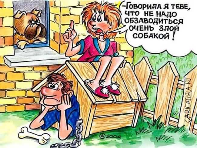 смешная карикатура про злую собаку и анекдот