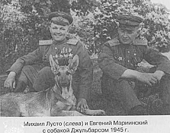 собака герой пёс Джульбарс сапёр