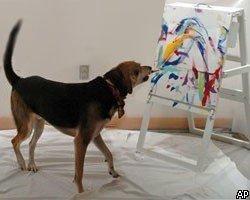 Собака-художник покорила галереи Нью-Йорка