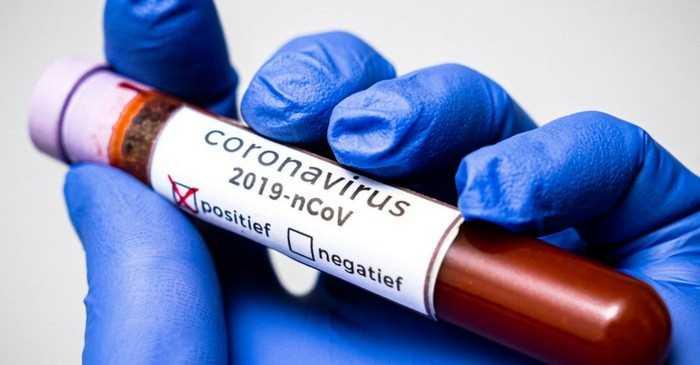 положительный тест на коронавирус у собаки