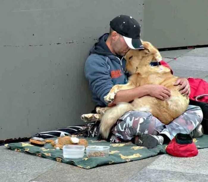 любовь собаки к человеку