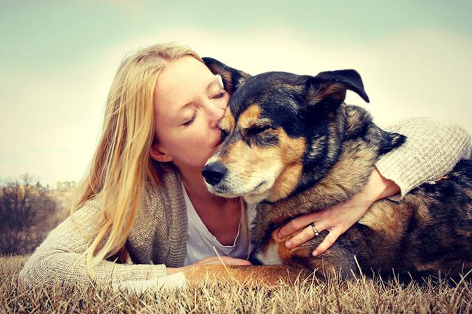 10 признаков того, что вы сходите с ума от любви к своей собаке