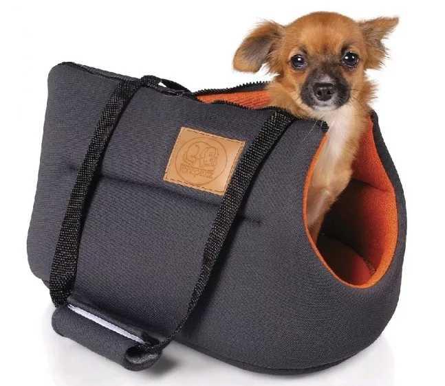 маленькая собака в сумке
