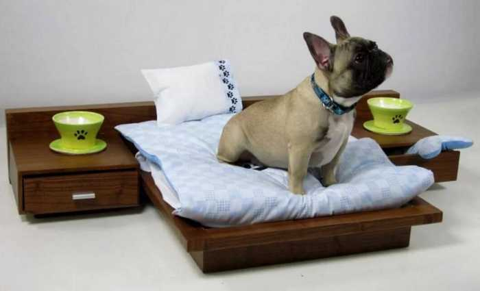 маленькая собака занимает меньше места