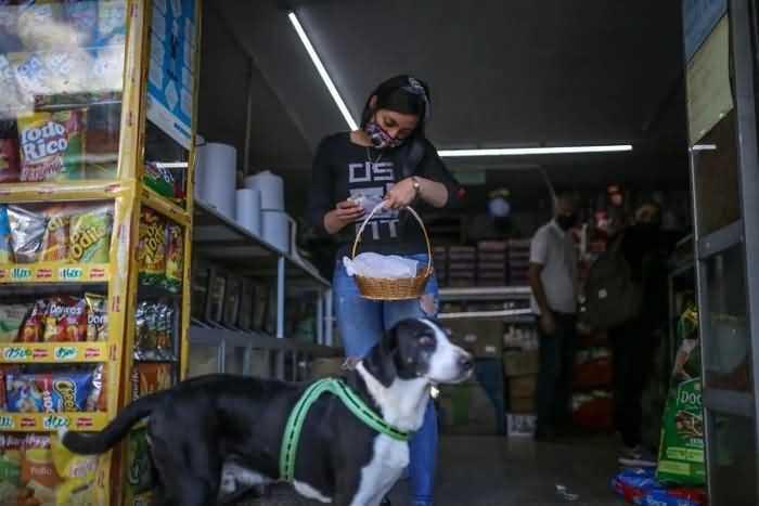 Пёс Ниньо пришел в магазин за продуктами