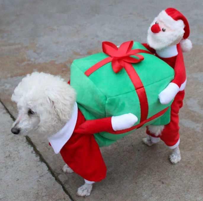 новогодний костюм для собаки