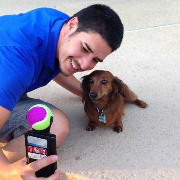 собака и селфи с игрушкой