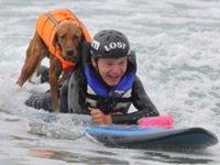Собака научила парализованного подростка серфингу