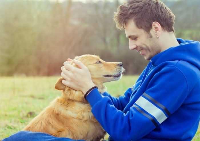 как научить собаку реагировать на имя