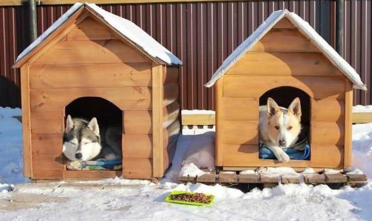 Купить домик для собак зоогурман ампир