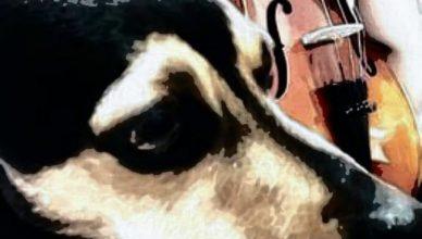 Стихи о собаке, которая ушла на радугу
