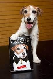 собака артист Угги с плакатом своей книги
