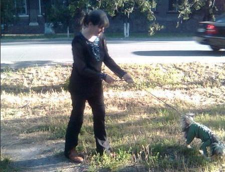 собачка Зося гуляет