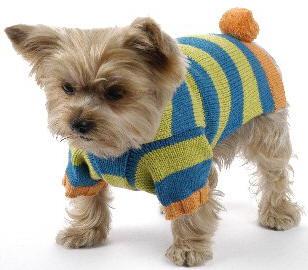 вяжем крючком свитер для собаки
